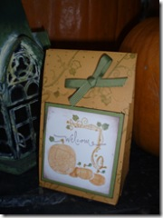 Pumpkin box - sample